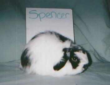 spencer2.jpg